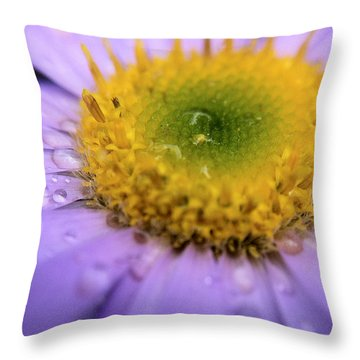 Small Wonder Throw Pillow