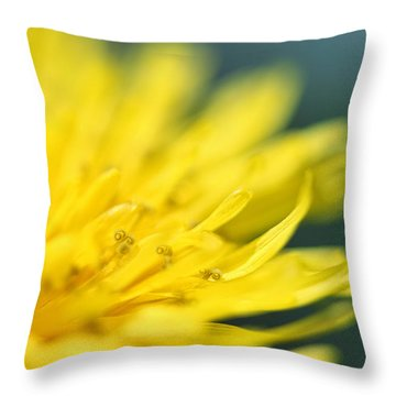 Throw Pillow featuring the photograph Small World by Amy Tyler