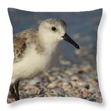 Smallest Bird Throw Pillow