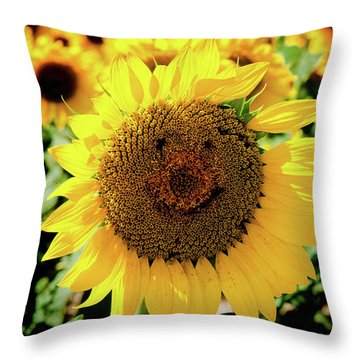 Smile Throw Pillow by Greg Fortier