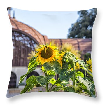 Sunflower Smile Throw Pillow by Joseph S Giacalone