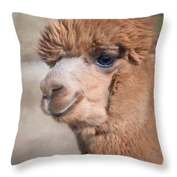 Throw Pillow featuring the photograph Smile by Robin-Lee Vieira