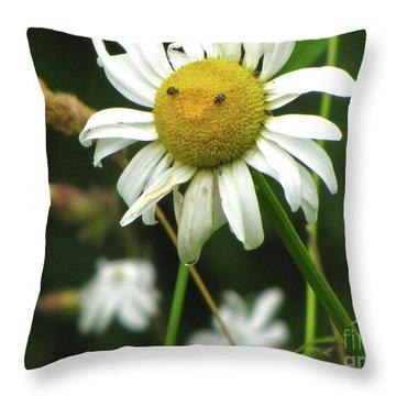 Smiley Face Ox-nose Daisy Throw Pillow