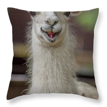 Smiling Alpaca Throw Pillow
