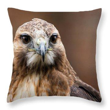 Smiling Bird Of Prey Throw Pillow