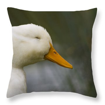 Smiling Pekin Duck Throw Pillow