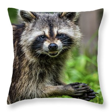 Smiling Raccoon Throw Pillow