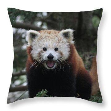 Smiling Red Panda #2 Throw Pillow
