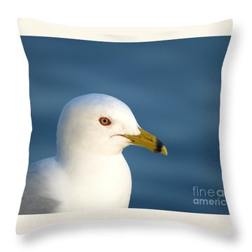 Smiling Seagull Throw Pillow by Susan Dimitrakopoulos