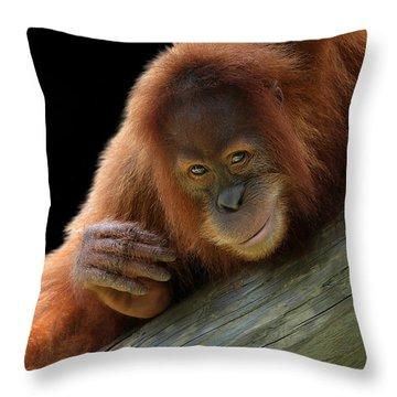 Cute Young Orangutan Throw Pillow