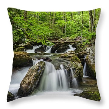 Smith Creek, Springtime Throw Pillow