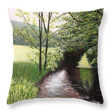 Smith Stream Throw Pillow