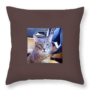 Driving Throw Pillows