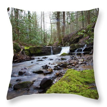 Smokey Mountains 4 Throw Pillow