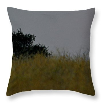 Throw Pillow featuring the photograph Smokey Sunset by AJ Schibig