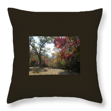 Smokies 12 Throw Pillow by Val Oconnor