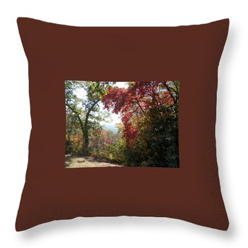 Smokies 13 Throw Pillow by Val Oconnor