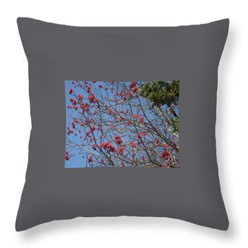 Smokies 8 Throw Pillow by Val Oconnor