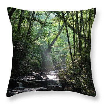 Smoky Throw Pillow