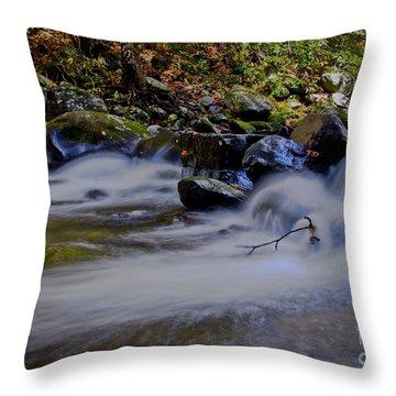 Throw Pillow featuring the photograph Smoky Mountain Stream by Douglas Stucky