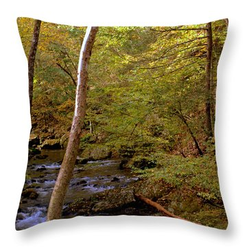 Smoky Mountains River Throw Pillow
