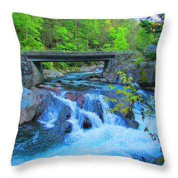 Smoky Mountains Stream Throw Pillow by Michael Rucker