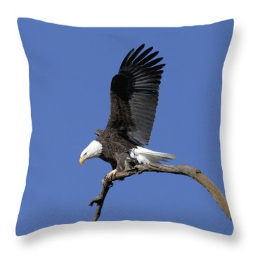 Smooth Landing 2 Throw Pillow by David Lester