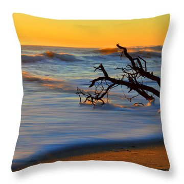 Smooth Move Throw Pillow by Dianne Cowen