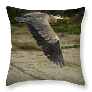 Smooth Sailing Wildlife Art By Kaylyn Franks Throw Pillow