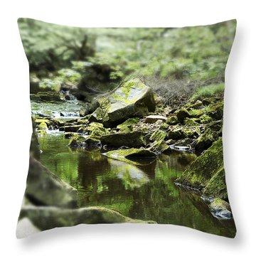 Smooth Throw Pillow by Svetlana Sewell