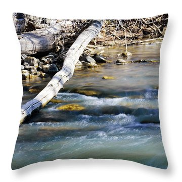 Smooth Water Throw Pillow
