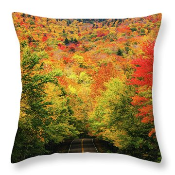 Smuggler's Notch Throw Pillow