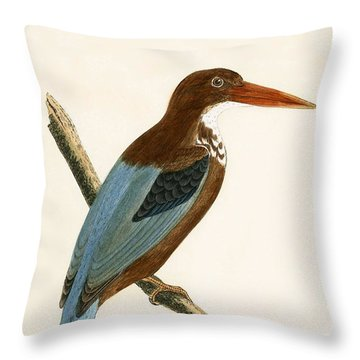 Smyrna Kingfisher Throw Pillow by English School