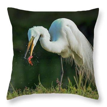 Snack Throw Pillow