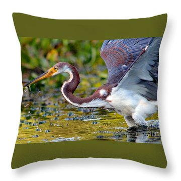 Snack - Signed Throw Pillow