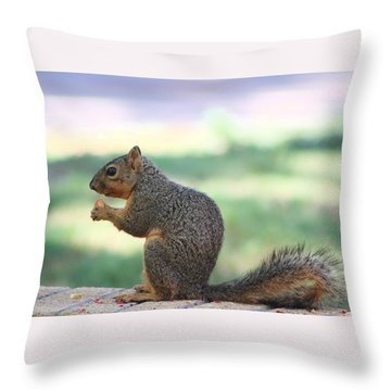 Snack Time Throw Pillow by Colleen Cornelius