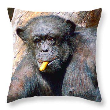 Snacking Chimpanzee II Throw Pillow by Donna Proctor
