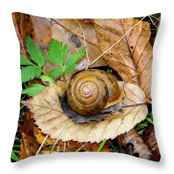 Snail Home Throw Pillow