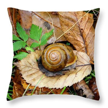 Snail Home Throw Pillow