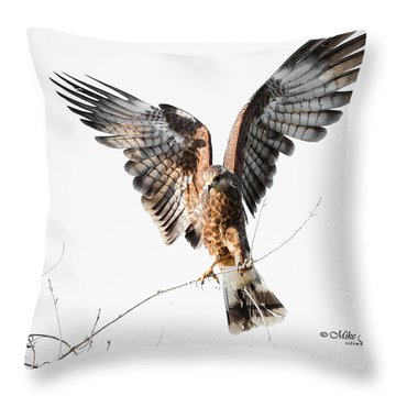 Snail Kite Exposed Throw Pillow