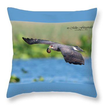 Snail Kite Returning Throw Pillow