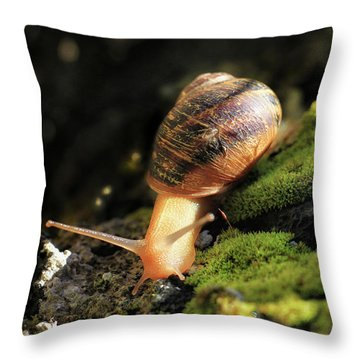Snail Moving Throw Pillow by Stephan Grixti