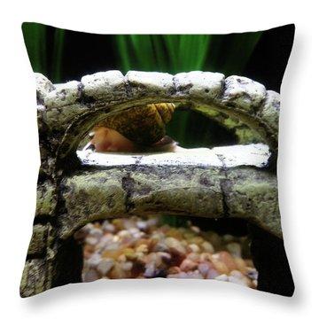 Snail Over A Bridge Throw Pillow