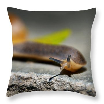 Snail Searching For Shell Throw Pillow
