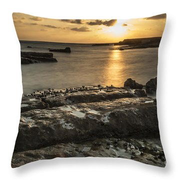 Snails At Sunset Throw Pillow by Arik Baltinester