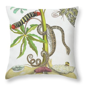 Snake, Caterpillar, Butterfly, And Insects On Plant Throw Pillow