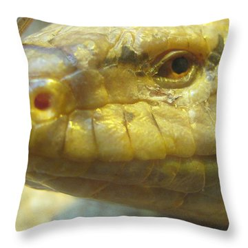 Snake Eye Throw Pillow
