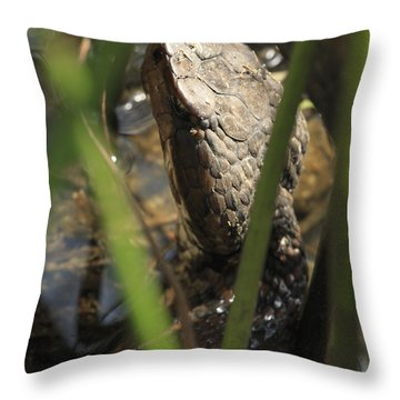 Snake In The Water Throw Pillow