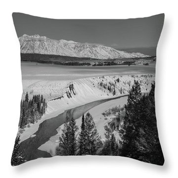 Snake River View Throw Pillow