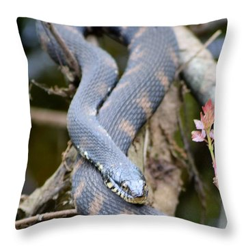 Snakes In The Trees Throw Pillow